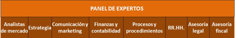 panel expertos